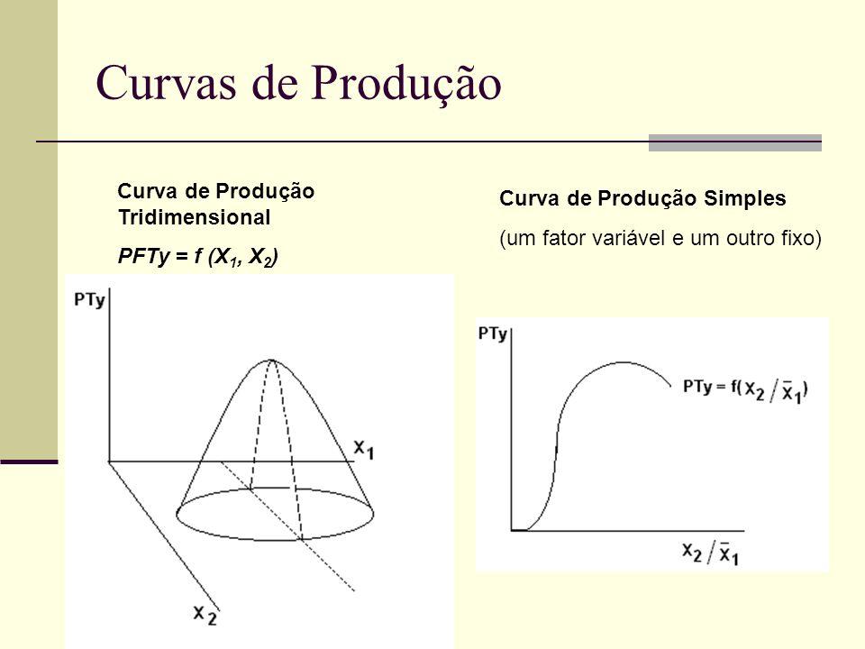 Curvas de Produção Curva de Produção Simples (um fator variável e um outro fixo) Curva de Produção Tridimensional PFTy = f (X 1, X 2 )