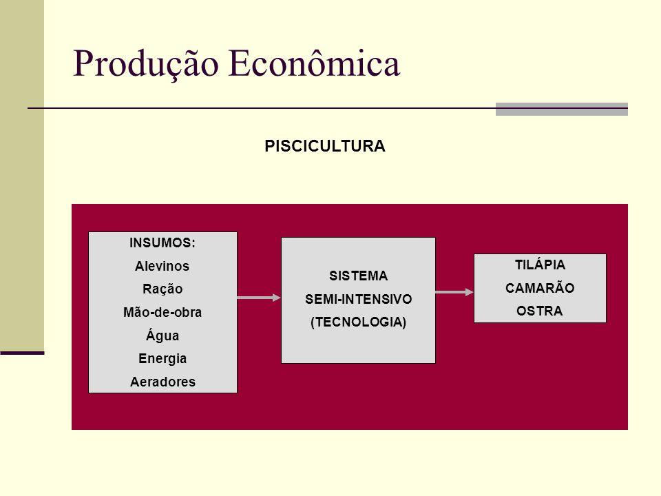 Produção Econômica INSUMOS: Alevinos Ração Mão-de-obra Água Energia Aeradores SISTEMA SEMI-INTENSIVO (TECNOLOGIA) TILÁPIA CAMARÃO OSTRA PISCICULTURA