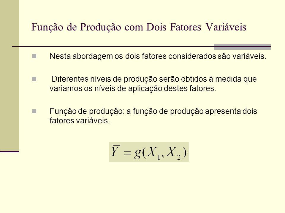Função de Produção com Dois Fatores Variáveis Nesta abordagem os dois fatores considerados são variáveis. Diferentes níveis de produção serão obtidos