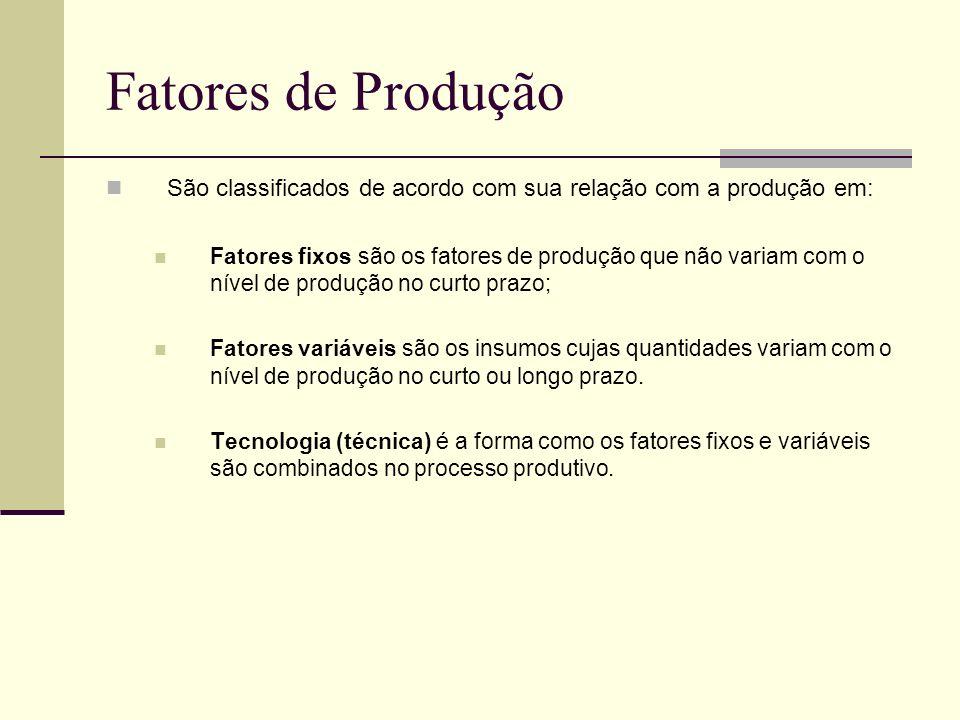 Fatores de Produção São classificados de acordo com sua relação com a produção em: Fatores fixos são os fatores de produção que não variam com o nível