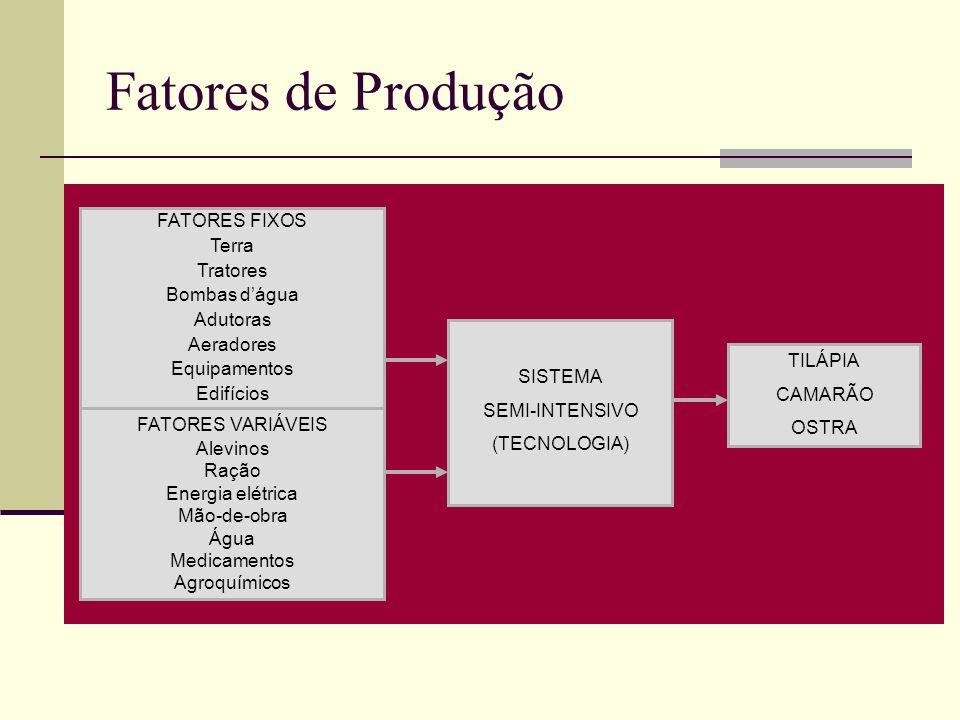 Fatores de Produção FATORES FIXOS Terra Tratores Bombas dágua Adutoras Aeradores Equipamentos Edifícios FATORES VARIÁVEIS Alevinos Ração Energia elétr