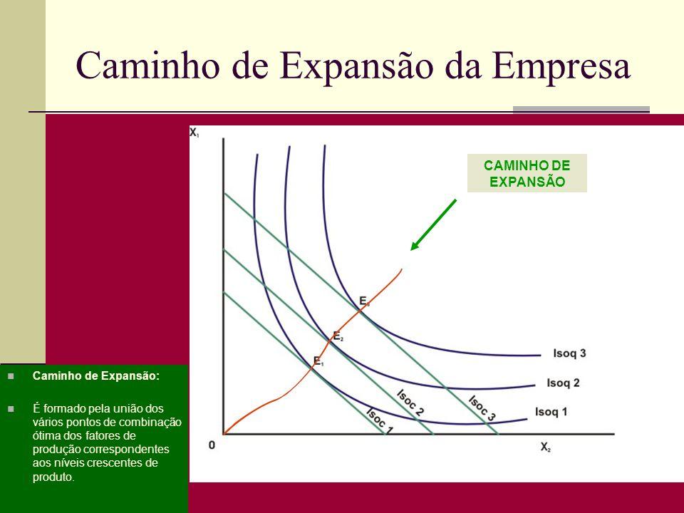 Caminho de Expansão da Empresa Caminho de Expansão: É formado pela união dos vários pontos de combinação ótima dos fatores de produção correspondentes