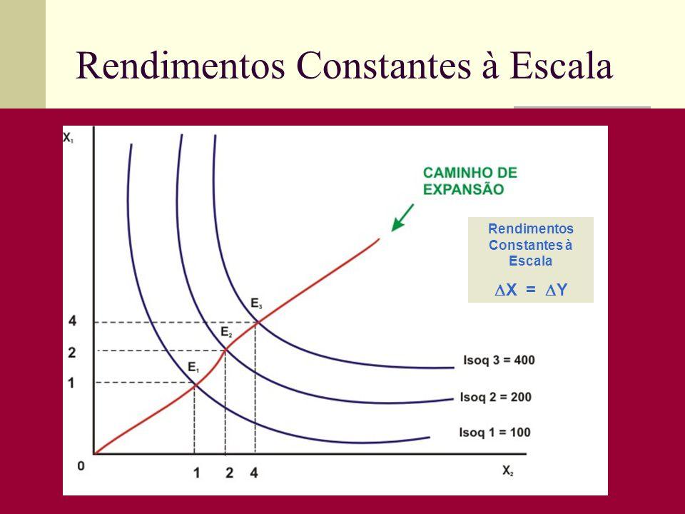 Rendimentos Constantes à Escala X = Y