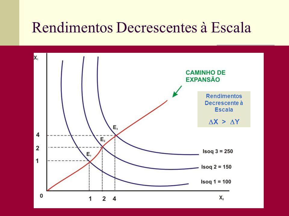 Rendimentos Decrescentes à Escala Rendimentos Decrescente à Escala X > Y