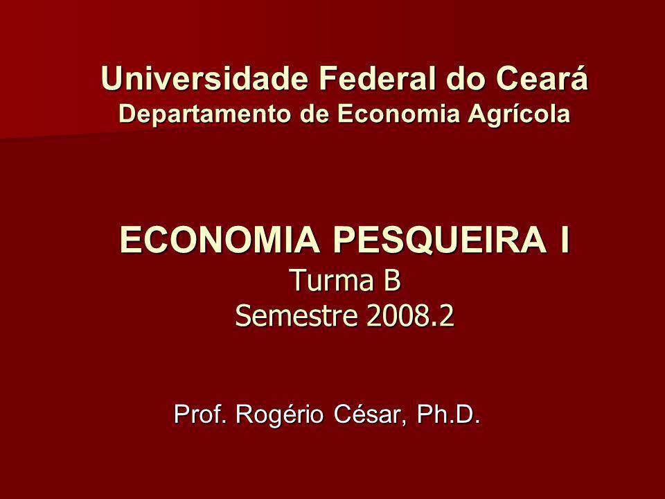 Universidade Federal do Ceará Departamento de Economia Agrícola ECONOMIA PESQUEIRA I Turma B Semestre 2008.2 Prof. Rogério César, Ph.D.