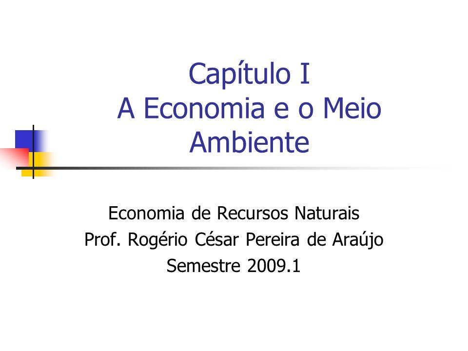 Capítulo I A Economia e o Meio Ambiente Economia de Recursos Naturais Prof. Rogério César Pereira de Araújo Semestre 2009.1