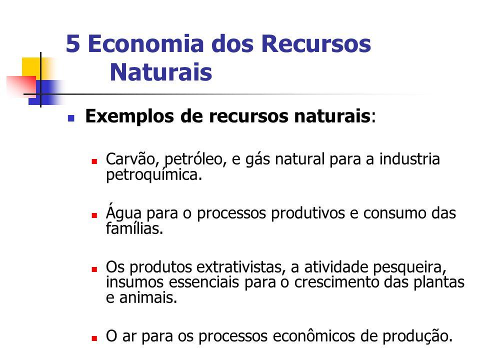 5 Economia dos Recursos Naturais Exemplos de recursos naturais: Carvão, petróleo, e gás natural para a industria petroquímica. Água para o processos p
