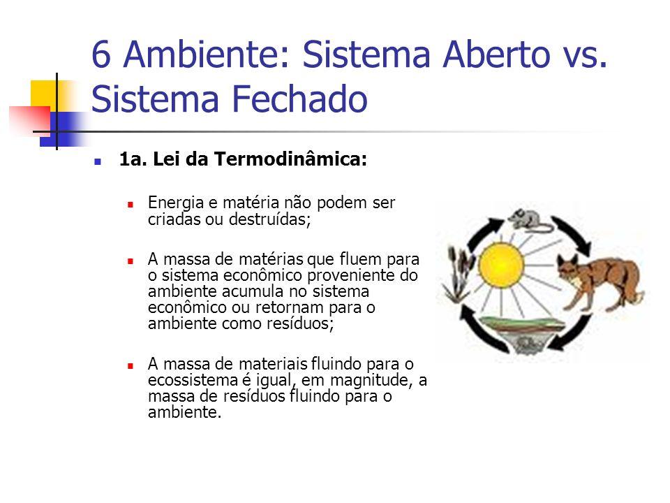 6 Ambiente: Sistema Aberto vs. Sistema Fechado 1a. Lei da Termodinâmica: Energia e matéria não podem ser criadas ou destruídas; A massa de matérias qu