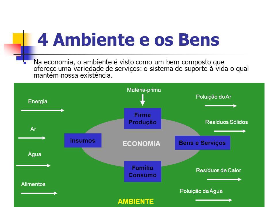 4 Ambiente e os Bens Na economia, o ambiente é visto como um bem composto que oferece uma variedade de serviços: o sistema de suporte à vida o qual ma