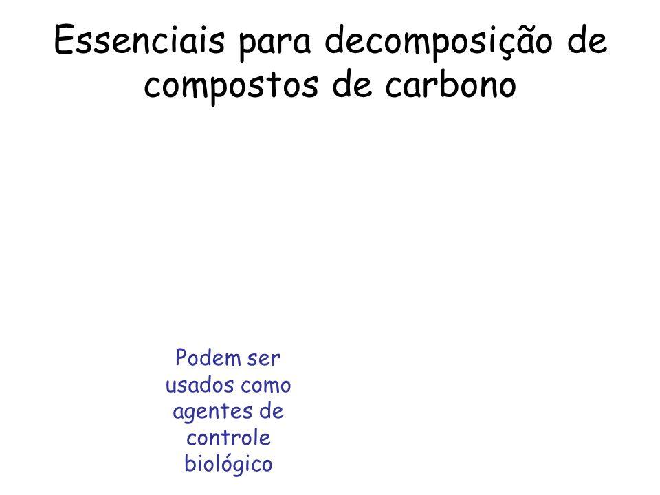 Essenciais para decomposição de compostos de carbono Podem ser usados como agentes de controle biológico