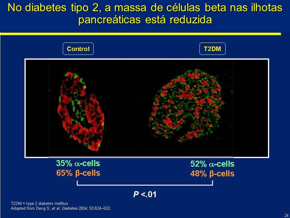 No diabetes tipo 2, a massa de células beta nas ilhotas pancreáticas está reduzida