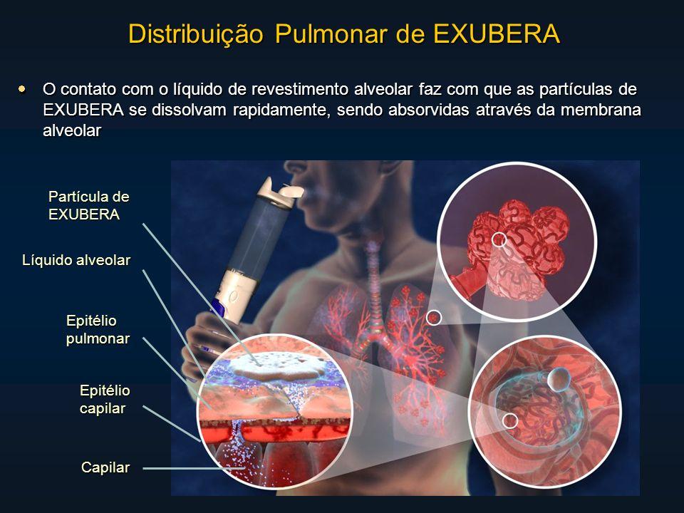 O contato com o líquido de revestimento alveolar faz com que as partículas de EXUBERA se dissolvam rapidamente, sendo absorvidas através da membrana alveolar O contato com o líquido de revestimento alveolar faz com que as partículas de EXUBERA se dissolvam rapidamente, sendo absorvidas através da membrana alveolar Partícula de EXUBERA Líquido alveolar Epitéliopulmonar Epitéliocapilar Capilar Distribuição Pulmonar de EXUBERA