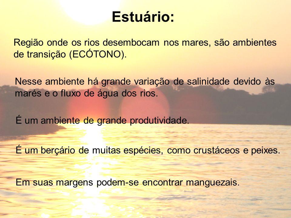 Estuário: Região onde os rios desembocam nos mares, são ambientes de transição (ECÓTONO). Nesse ambiente há grande variação de salinidade devido às ma