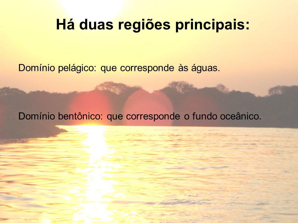 Há duas regiões principais: Domínio pelágico: que corresponde às águas. Domínio bentônico: que corresponde o fundo oceânico.