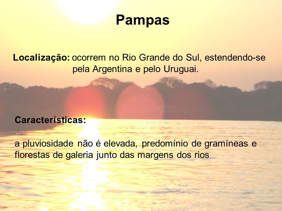 Características: Pampas Localização: ocorrem no Rio Grande do Sul, estendendo-se pela Argentina e pelo Uruguai. a pluviosidade não é elevada, predomín