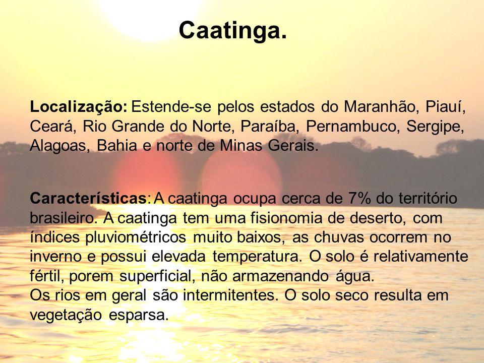 Características: A caatinga ocupa cerca de 7% do território brasileiro. A caatinga tem uma fisionomia de deserto, com índices pluviométricos muito bai