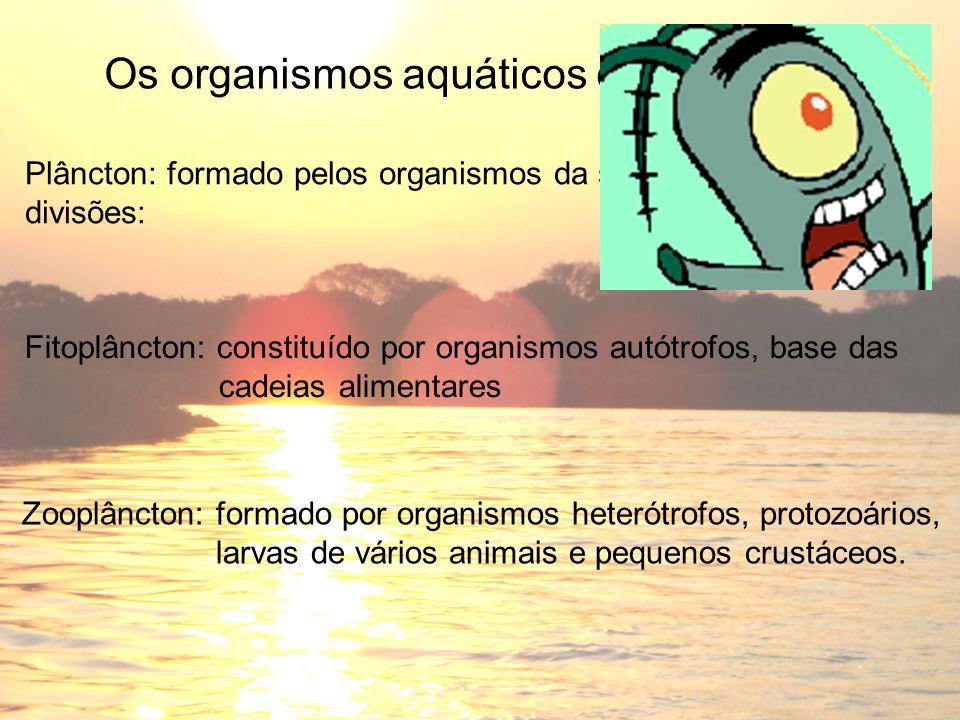 Plâncton: formado pelos organismos da superfície. Há duas divisões: Zooplâncton: formado por organismos heterótrofos, protozoários, larvas de vários a