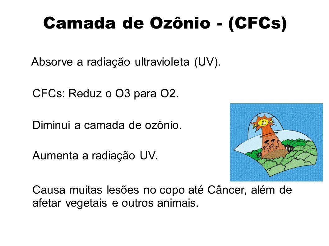 Camada de Ozônio - (CFCs) Absorve a radiação ultravioleta (UV). CFCs: Reduz o O3 para O2. Diminui a camada de ozônio. Aumenta a radiação UV. Causa mui