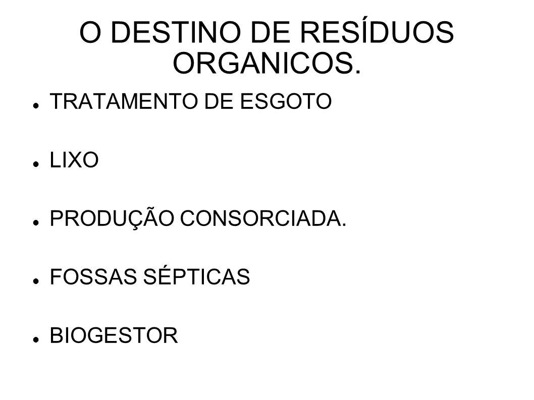 O DESTINO DE RESÍDUOS ORGANICOS. TRATAMENTO DE ESGOTO LIXO PRODUÇÃO CONSORCIADA. FOSSAS SÉPTICAS BIOGESTOR