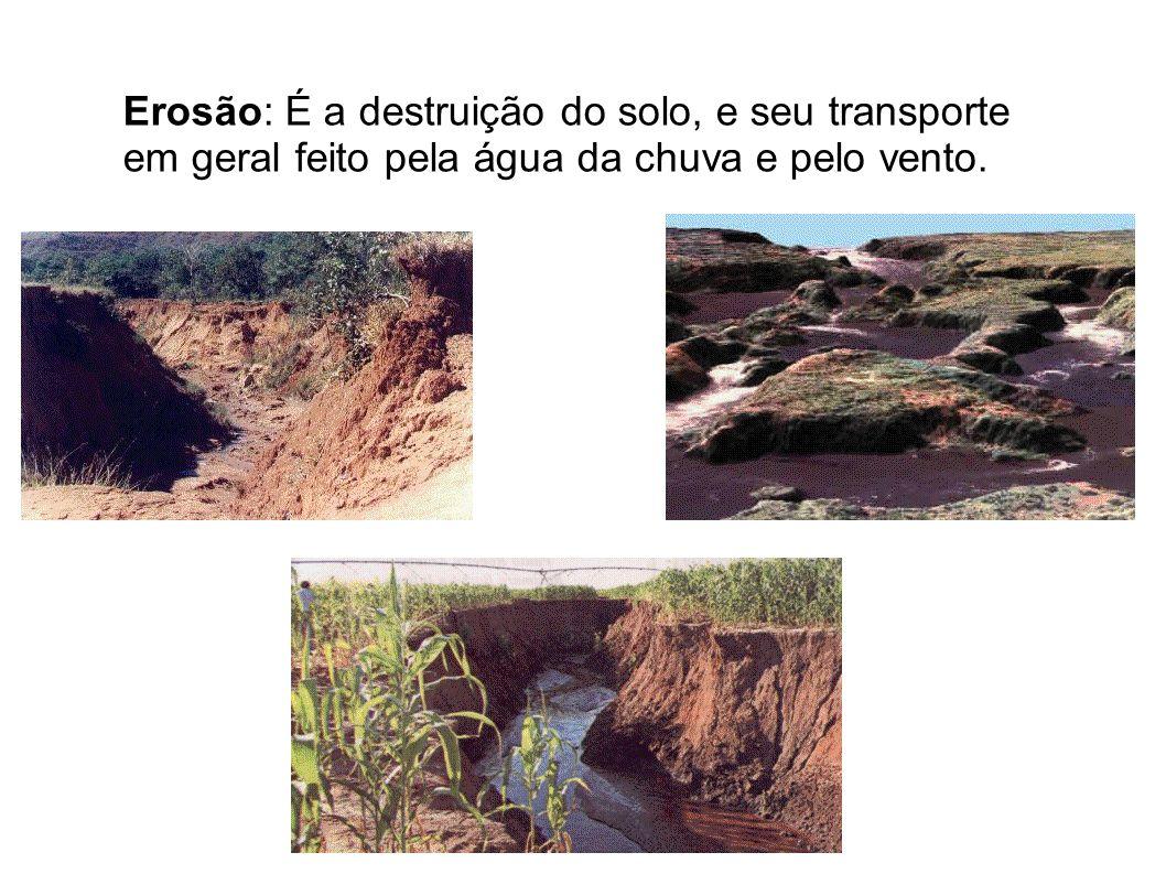 Erosão: É a destruição do solo, e seu transporte em geral feito pela água da chuva e pelo vento.