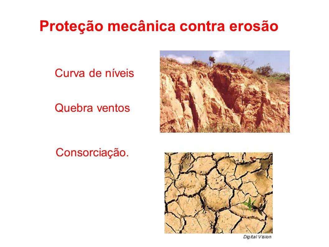 Proteção mecânica contra erosão Curva de níveis Quebra ventos Consorciação.o