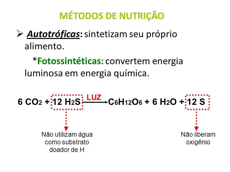 Autotróficas: sintetizam seu próprio alimento. *Fotossintéticas: convertem energia luminosa em energia química. MÉTODOS DE NUTRIÇÃO 6 CO 2 + 12 H 2 S