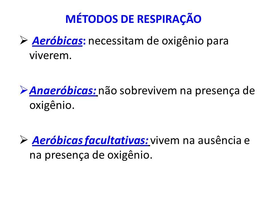 Aeróbicas: necessitam de oxigênio para viverem. Anaeróbicas: não sobrevivem na presença de oxigênio. Aeróbicas facultativas: vivem na ausência e na pr
