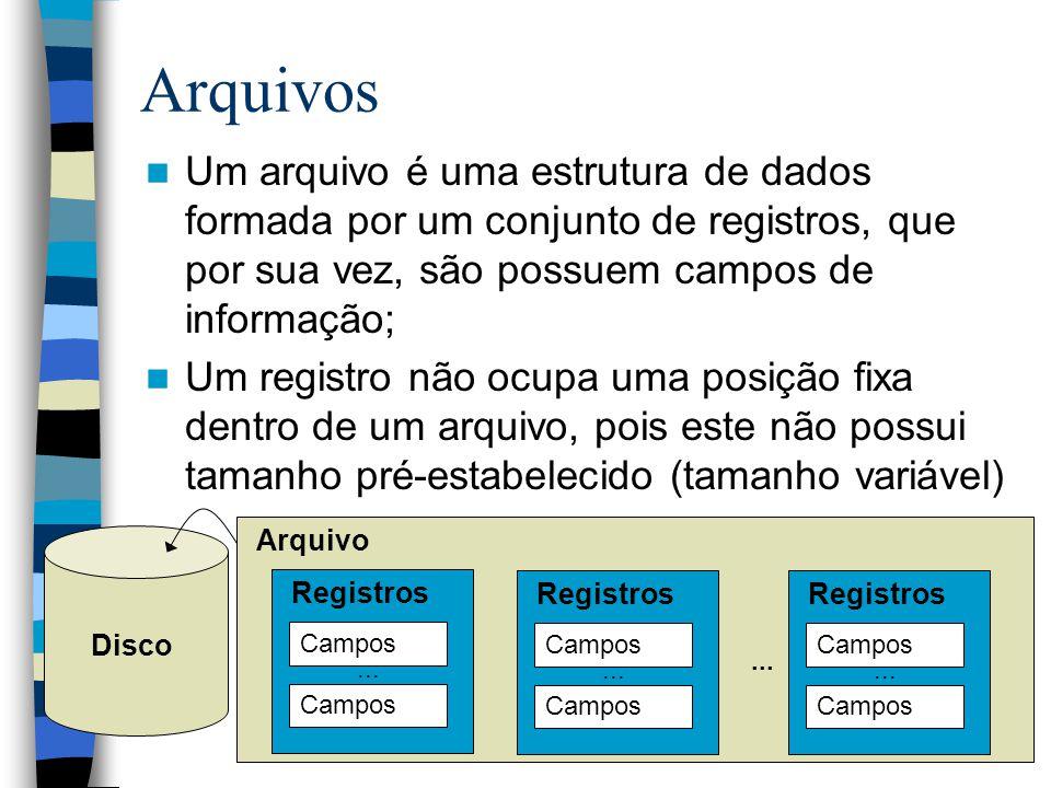 Arquivos Um arquivo é uma estrutura de dados formada por um conjunto de registros, que por sua vez, são possuem campos de informação; Um registro não