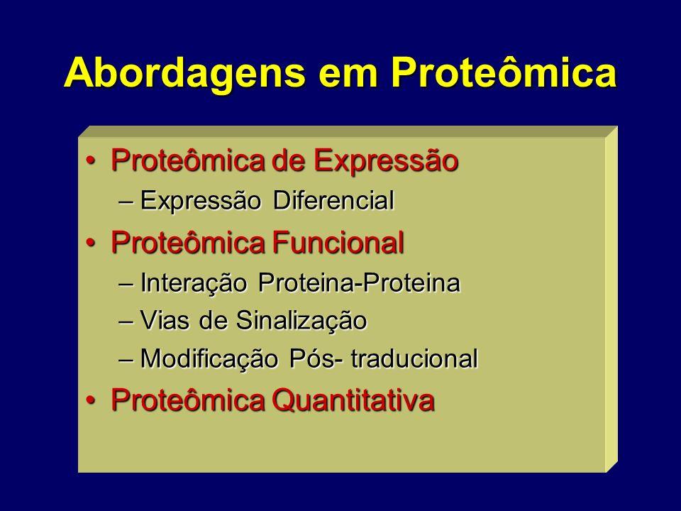 Abordagens em Proteômica Proteômica de ExpressãoProteômica de Expressão –Expressão Diferencial Proteômica FuncionalProteômica Funcional –Interação Pro