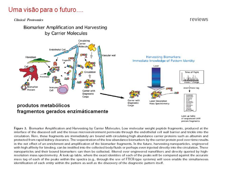 Uma visão para o futuro.... produtos metabólicos fragmentos gerados enzimáticamente