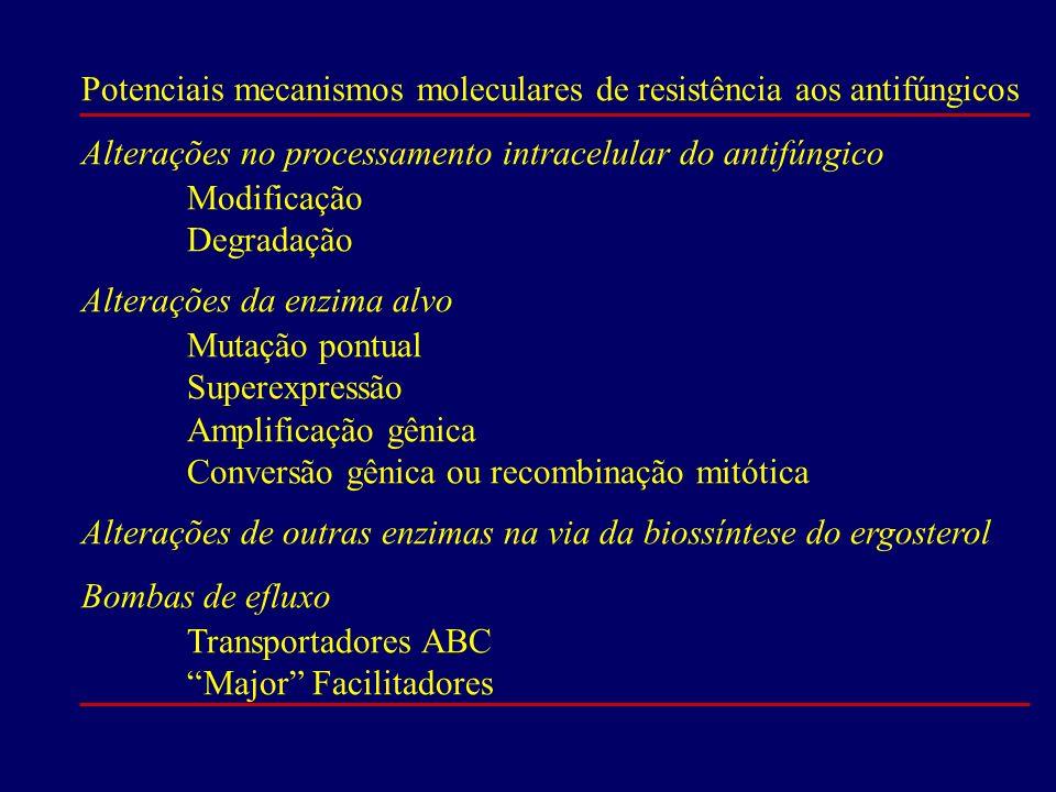Potenciais mecanismos moleculares de resistência aos antifúngicos Alterações no processamento intracelular do antifúngico Modificação Degradação Alter