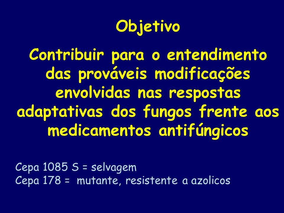 Candida glabrata Parede celular Microssoma Citoplasma Proteínas Cepa 1085 S = selvagem Cepa 178 = mutante, resistente a azolicos