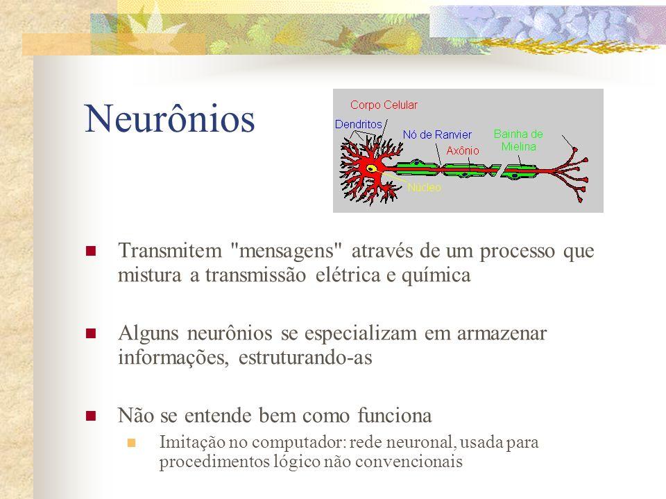 Neurônios Transmitem