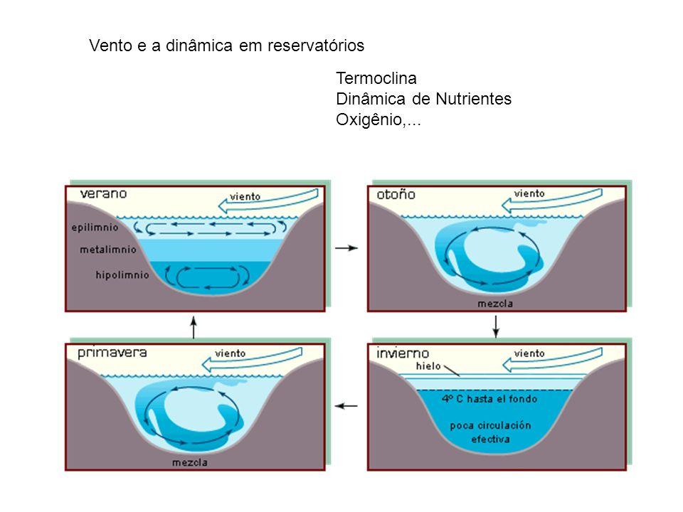 Vento e a dinâmica em reservatórios Termoclina Dinâmica de Nutrientes Oxigênio,...