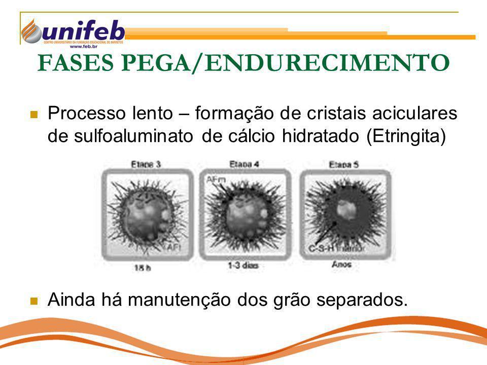 FASES PEGA/ENDURECIMENTO Processo lento – formação de cristais aciculares de sulfoaluminato de cálcio hidratado (Etringita) Ainda há manutenção dos gr