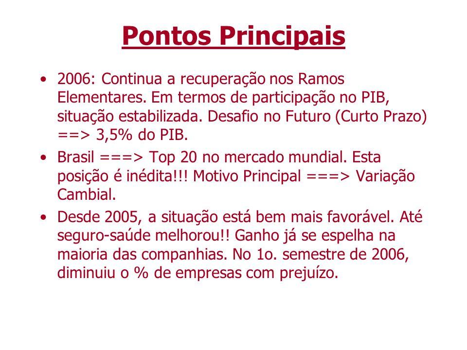 Pontos Principais 2006: Continua a recuperação nos Ramos Elementares. Em termos de participação no PIB, situação estabilizada. Desafio no Futuro (Curt