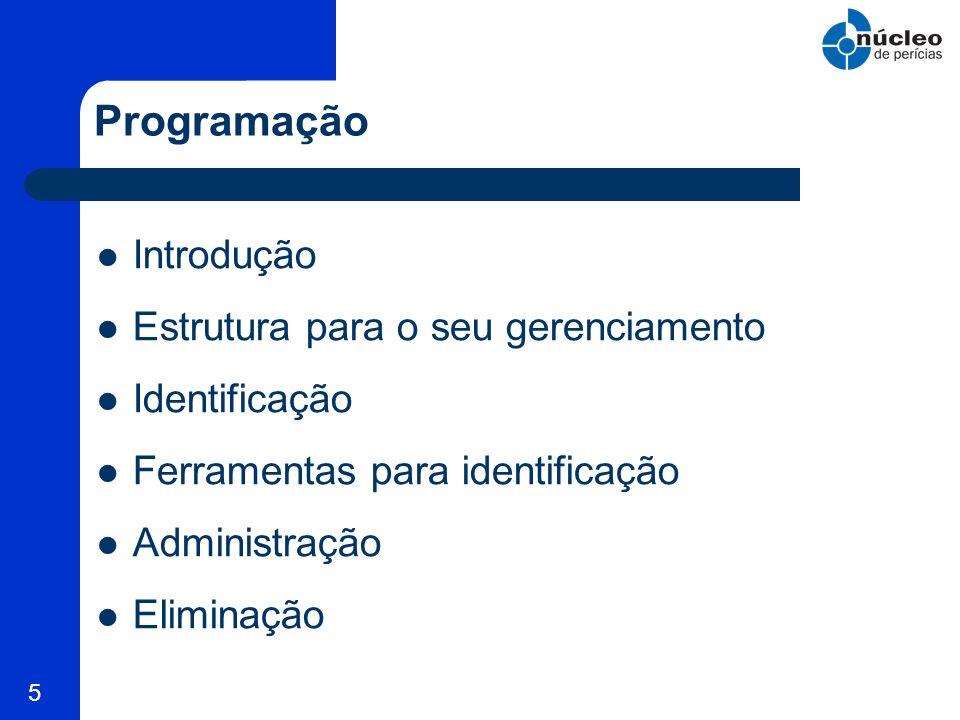 5 Programação Introdução Estrutura para o seu gerenciamento Identificação Ferramentas para identificação Administração Eliminação