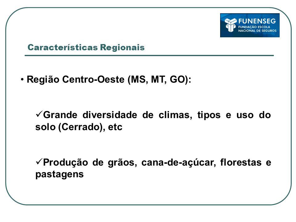 Características do agronegócio brasileiro Sistema de alto risco: Risco de produtividade (quebra de safra) Zoneamento agrícola Transição geográfica Risco de preços Insumos Produto Risco de variações na taxa de câmbio Risco sanitário