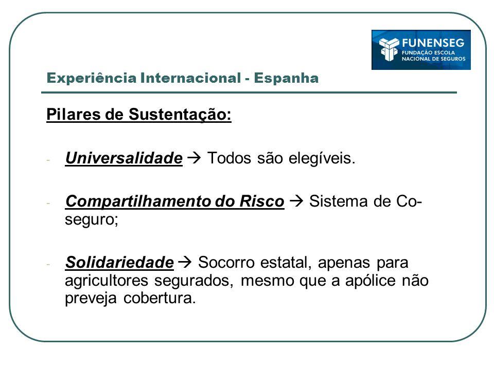 Experiência Internacional - Espanha Sistema - Seguro Agrário Combinado (SAC), criado em 1978: AGROSEGURO Produtores Rurais / Cooperativas Agrícolas Entidad Estatal de Seguros Agrarios (ENESA) Subsídios Federais Consorcio de Compensacion de Seguros (CCS) Resseguro Estatal Governo Espanhol garante socorro governamental para riscos não cobertos pelo seguro, mas apenas para os produtores que tiverem contratado seguro através da AGROSEGURO!!!