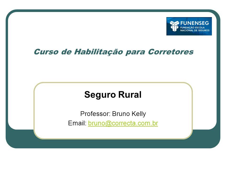 Curso de Habilitação para Corretores Seguro Rural Professor: Bruno Kelly Email: bruno@correcta.com.brbruno@correcta.com.br