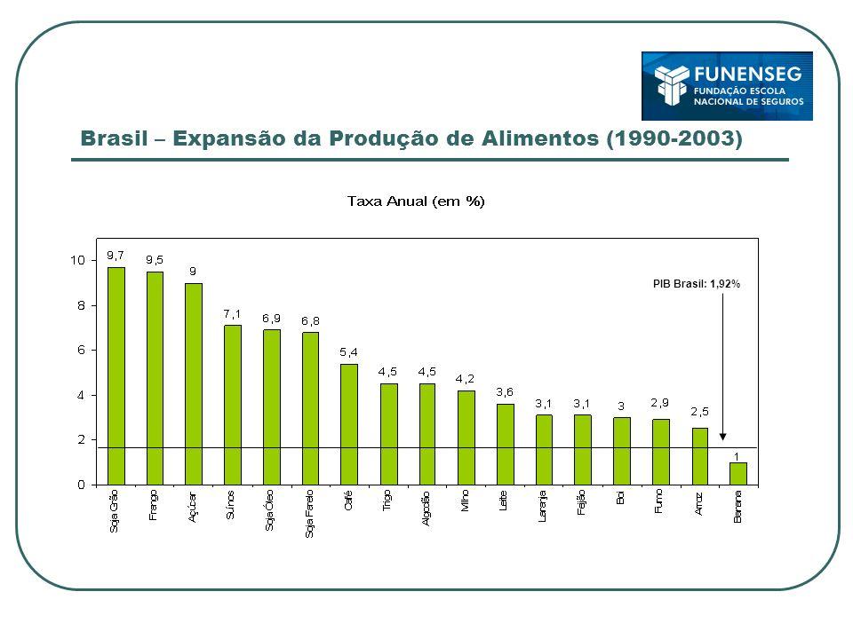 Brasil – Expansão da Produção de Alimentos (1990-2003) PIB Brasil: 1,92%