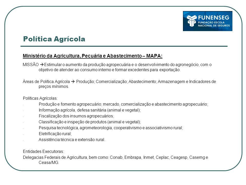 Política Agrícola Ministério da Agricultura, Pecuária e Abastecimento – MAPA: MISSÃO Estimular o aumento da produção agropecuária e o desenvolvimento