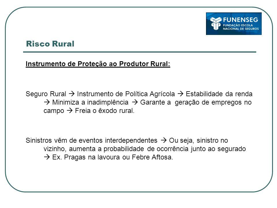 Risco Rural Instrumento de Proteção ao Produtor Rural: Seguro Rural Instrumento de Política Agrícola Estabilidade da renda Minimiza a inadimplência Ga