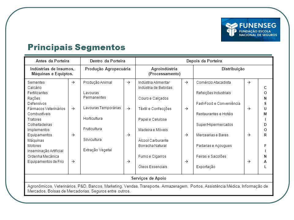 Principais Segmentos Antes da PorteiraDentro da PorteiraDepois da Porteira Indústrias de Insumos, Máquinas e Equiptos. Produção AgropecuáriaAgroindúst