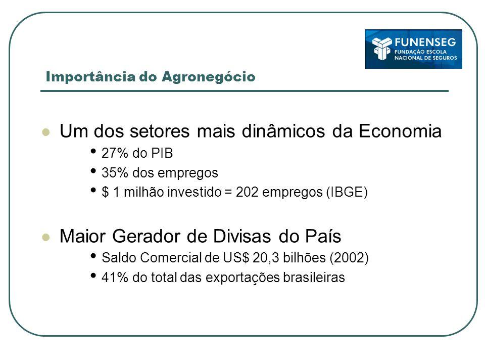 Importância do Agronegócio Um dos setores mais dinâmicos da Economia 27% do PIB 35% dos empregos $ 1 milhão investido = 202 empregos (IBGE) Maior Gera