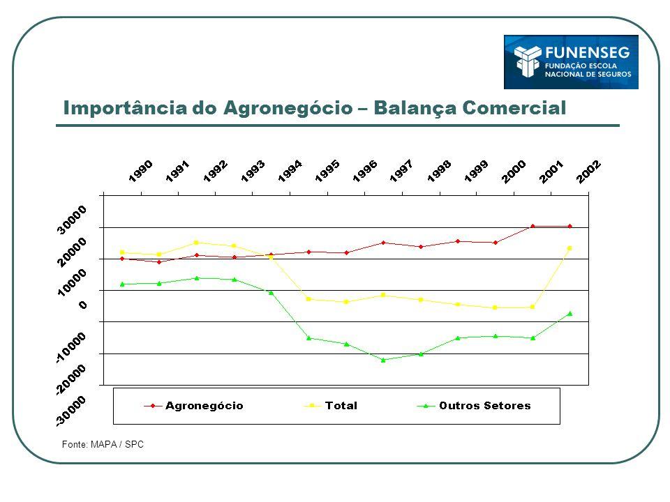 Importância do Agronegócio – Balança Comercial Fonte: MAPA / SPC