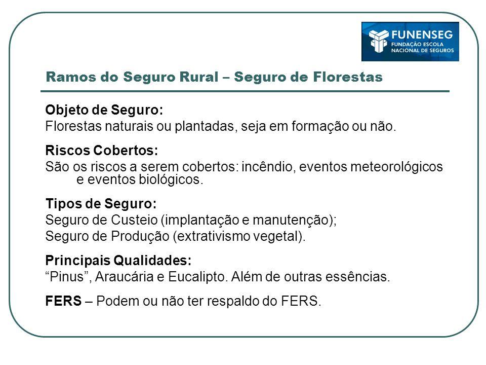 Ramos do Seguro Rural – Seguro de Florestas Objeto de Seguro: Florestas naturais ou plantadas, seja em formação ou não. Riscos Cobertos: São os riscos