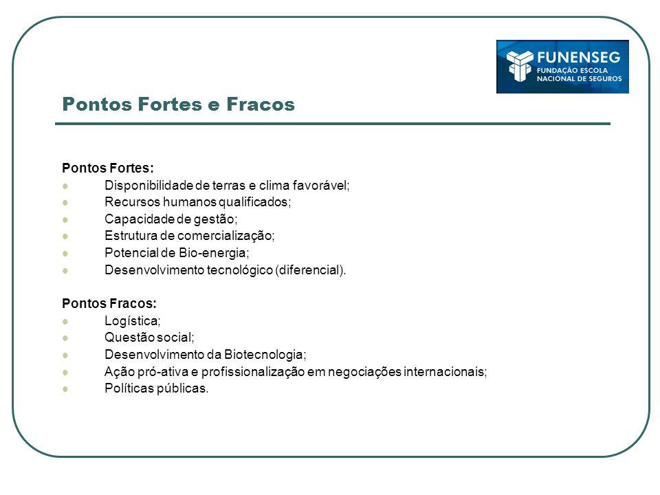 Pontos Fortes e Fracos Pontos Fortes: Disponibilidade de terras e clima favorável; Recursos humanos qualificados; Capacidade de gestão; Estrutura de c