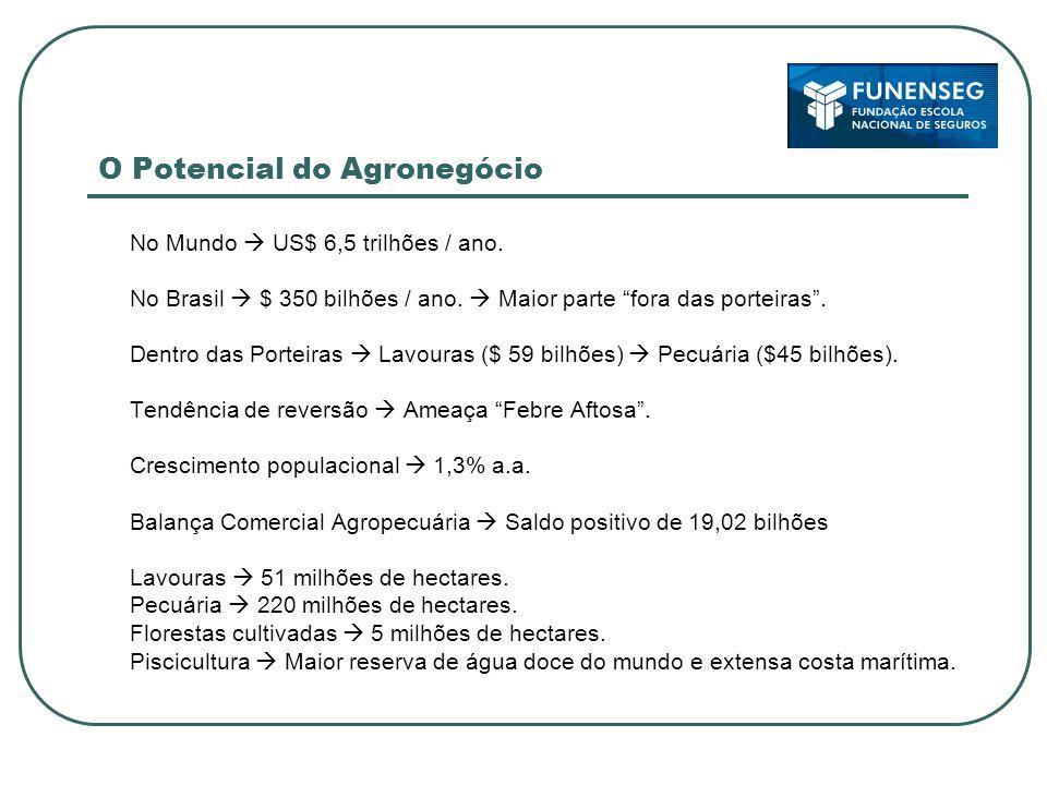 O Potencial do Agronegócio No Mundo US$ 6,5 trilhões / ano. No Brasil $ 350 bilhões / ano. Maior parte fora das porteiras. Dentro das Porteiras Lavour