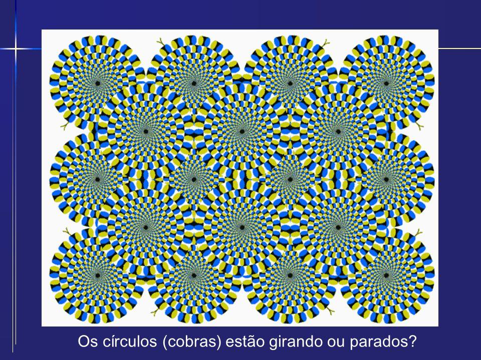 Os círculos (cobras) estão girando ou parados?